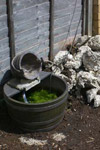 A cheap plastic 'water feature' beside a pile of concrete rubble - Karen Holliday's replacement for our herb garden